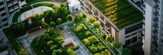 Las ciudades del futuro tendrán más muros y techos verdes